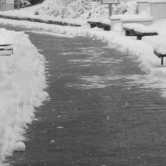 Snow Storms and Sidewalk Slip Injury